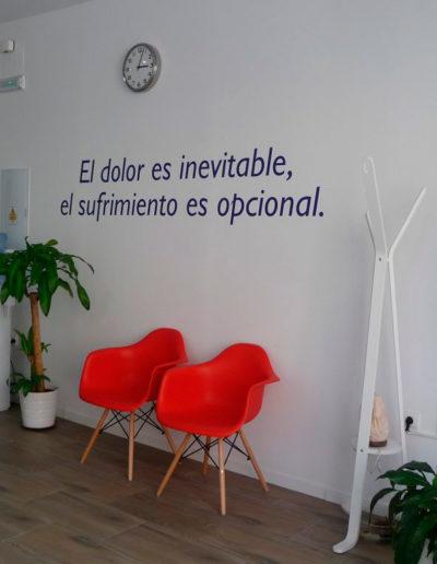 centro de fisioterapia sevilla recepcion